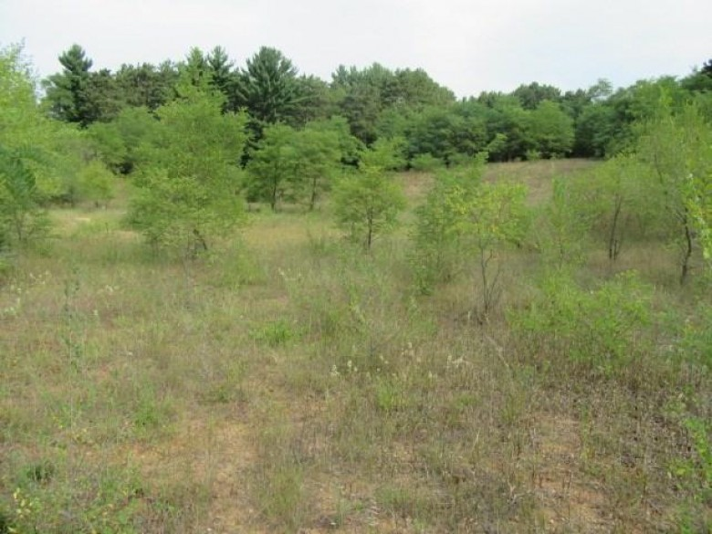 702 W Main Street Wautoma, WI 54982 by The Ellickson Agency, Inc. $110,000