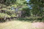 E10901 Nature Road, Clintonville, WI by Whitetail Dreams Real Estate, LLC $672,000
