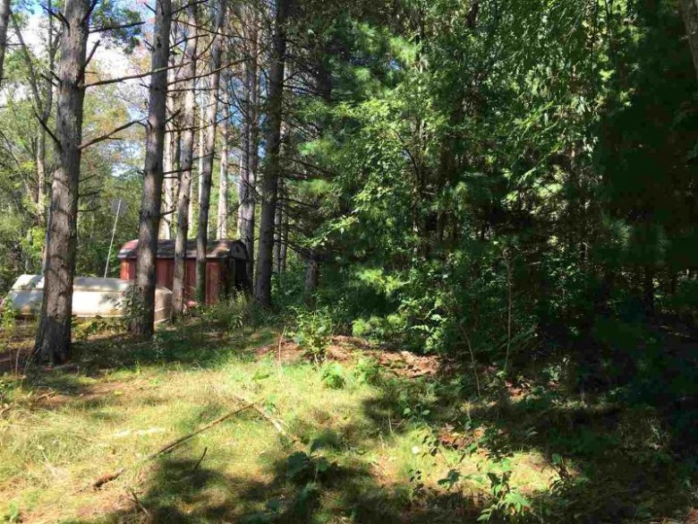 Hidden Springs Drive, Neshkoro, WI by Coldwell Banker Real Estate Group $64,900
