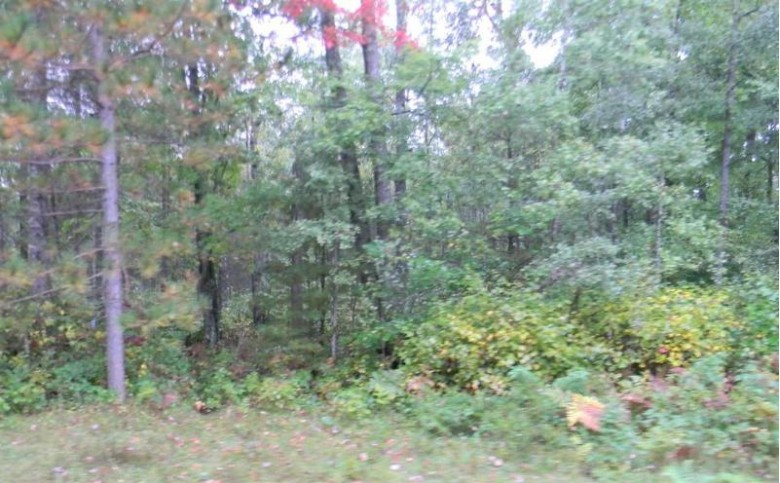 Menominee Woods Drive, Wausaukee, WI by Coldwell Banker Real Estate Group $24,000