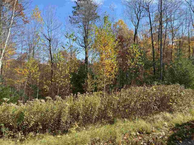 Makwa Court, Crivitz, WI by Coldwell Banker Real Estate Group $38,000