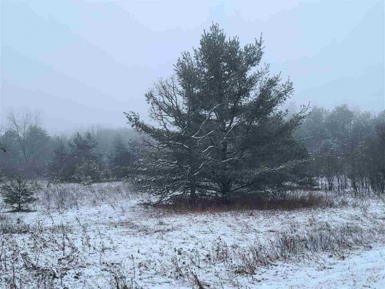 Hwy Gh, Wild Rose, WI by Coldwell Banker Real Estate Group $64,900