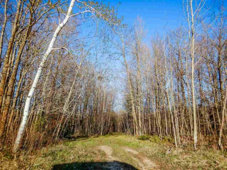 Brazeau Town Hall Road, Pound, WI by Executive Realty $253,500