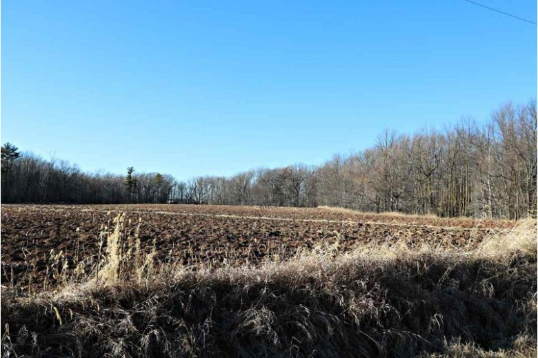 Section Line Road, Kaukauna, WI by Brenda Fritsch Realty $875,000