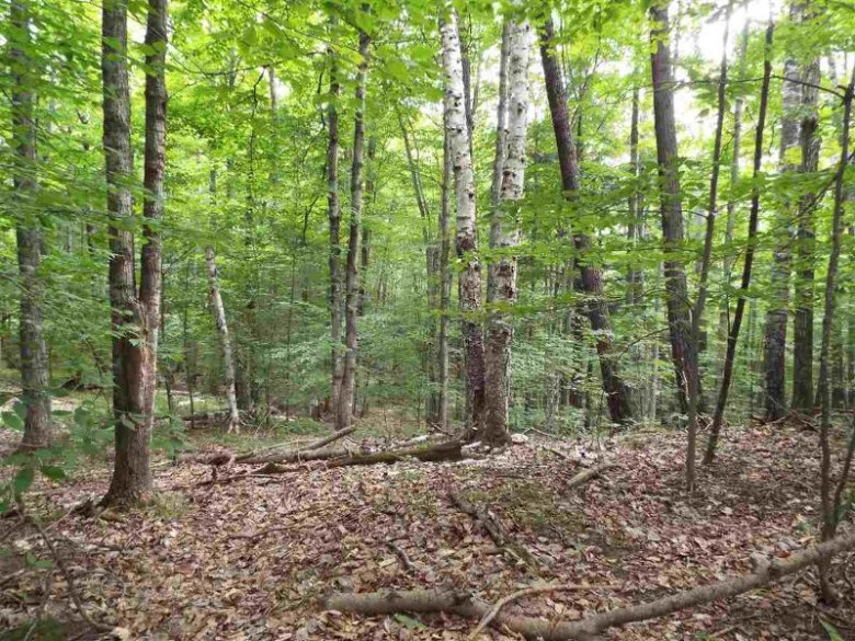 N12655 Hemlock Shores Court, Athelstane, WI by BayView Real Estate $36,500