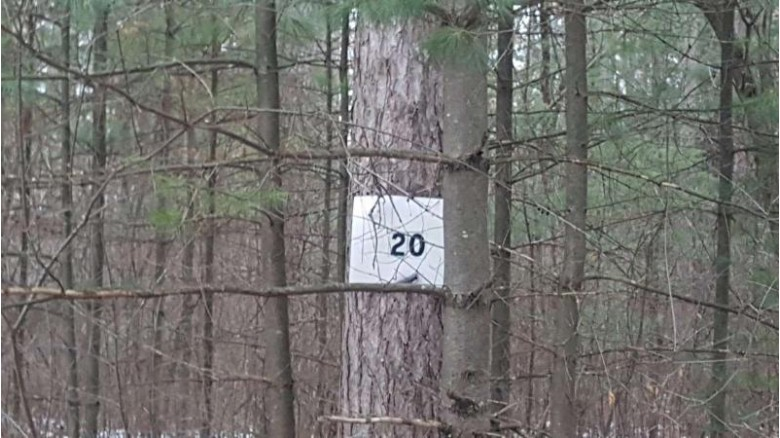 N Wilson Lake Road, Wild Rose, WI by First Weber Real Estate $24,500