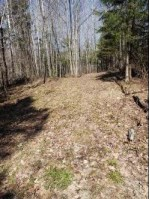 1674 N Lily Lake Lane Pickerel, WI 54465 by Symes Realty, LLC $449,000