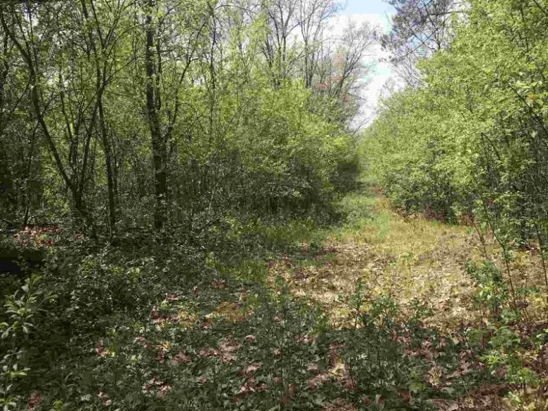 15th Drive, Wautoma, WI by Coldwell Banker Real Estate Group $99,000