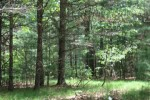 N591 19th Road Neshkoro, WI 54960 by Keller Williams Fox Cities $59,900