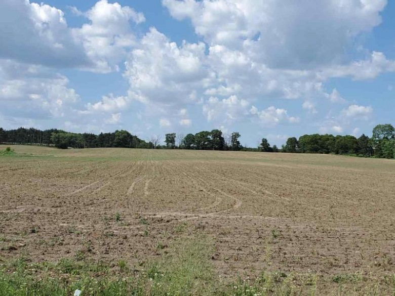 Cypress Avenue Coloma, WI 54930 by First Weber Real Estate $100,000