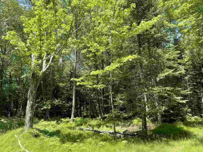 Hwy S, Argonne, WI by Signature Realty, Inc. $35,000