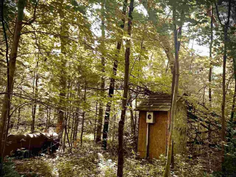 Strawberry Circle Wild Rose, WI 54984 by Coldwell Banker Real Estate Group $23,900