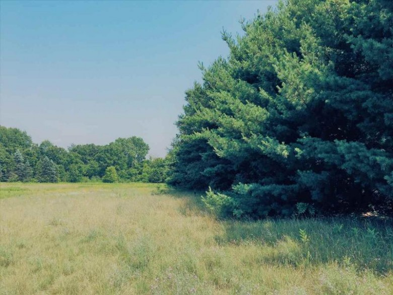 Grant Avenue Wild Rose, WI 54984 by First Weber Real Estate $20,000
