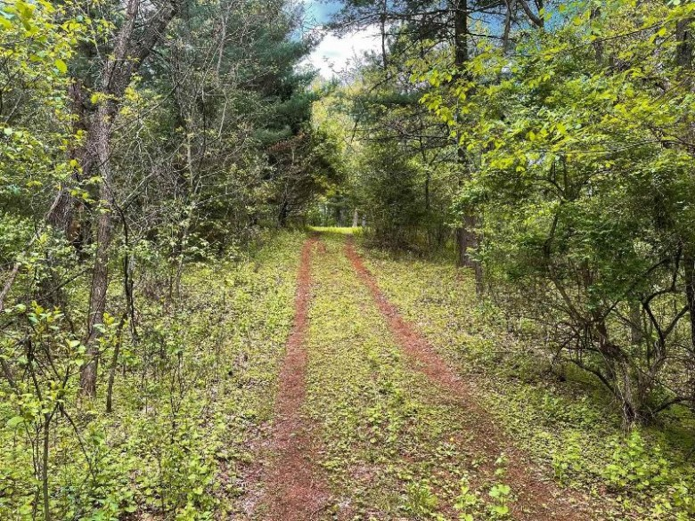 Hiwela Drive, Wild Rose, WI by Coldwell Banker Real Estate Group $94,900
