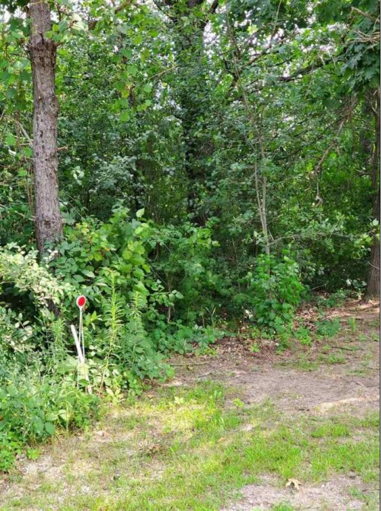 Hwy E Redgranite, WI 54970 by First Weber Real Estate $55,000