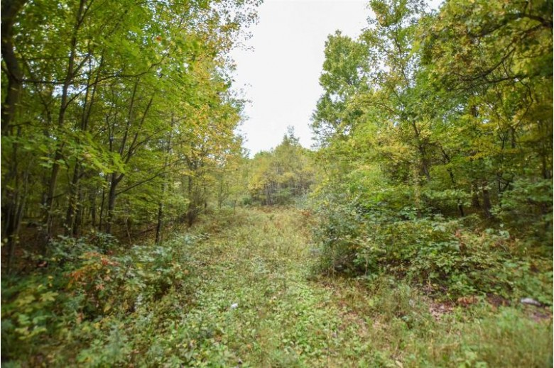 S Long Lake Road Wild Rose, WI 54984-0000 by Real Pro $29,900