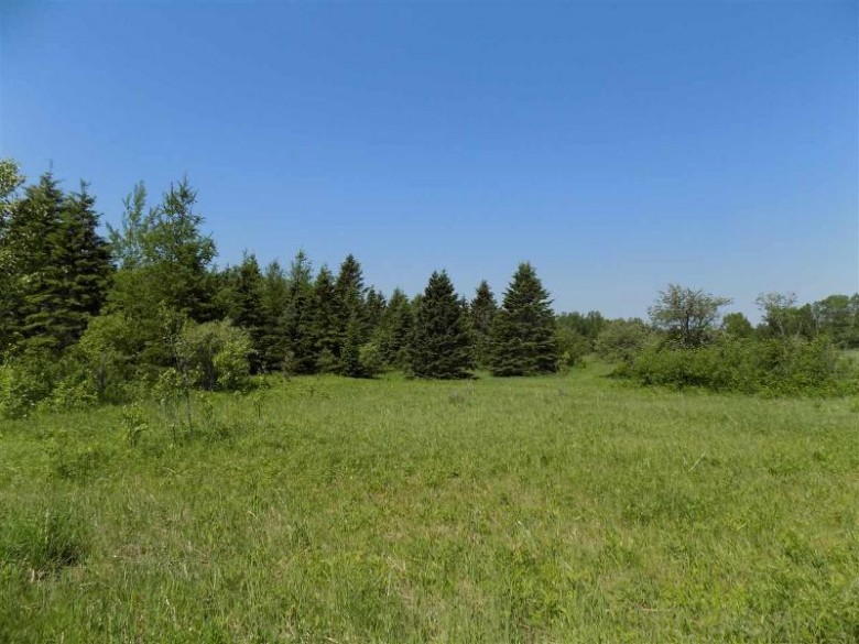 TBD Co Rd 432, Gulliver, MI by Grover Real Estate $89,000