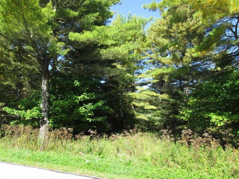 TBD Co Rd 440 Unit 5, Manistique, MI by Grover Real Estate $32,500