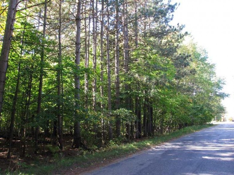 TBD Co Rd 440 Unit 8, Manistique, MI by Grover Real Estate $32,500