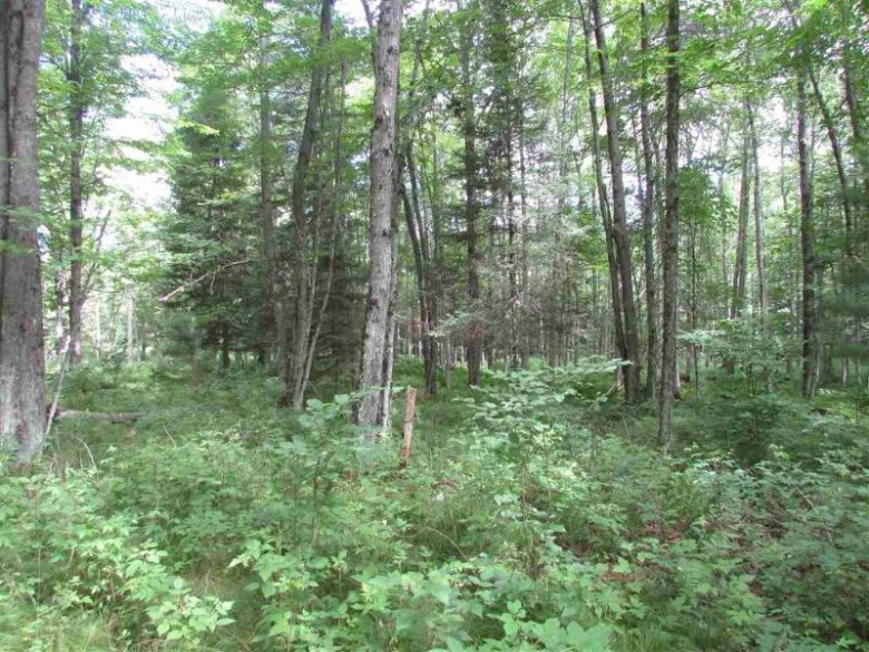 TBD Paint River Rd LOT 2, Crystal Falls, MI by Century 21 North Country Agency $45,000