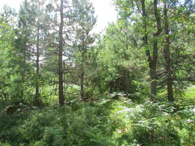 TBD Paint River Rd Lot 6, Crystal Falls, MI by Century 21 North Country Agency $25,000
