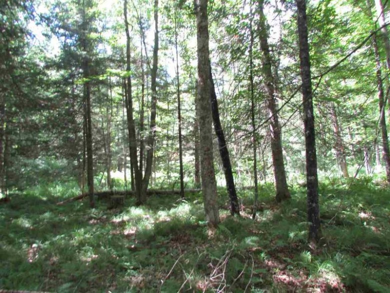 TBD Paint River Rd Lot 7, Crystal Falls, MI by Century 21 North Country Agency $25,000