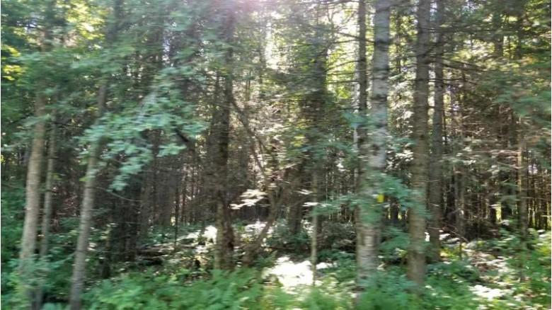 TBD Wildwood Lake Rd Lots M & N, Iron River, MI by U.p. Riverland Realty $110,000