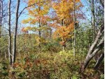 10 ACRES Lookout Ln Ironwood, MI 49938 by First Weber Real Estate $35,000