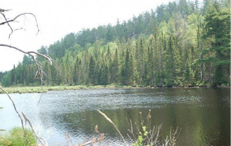 TBD Wolf Lake Rd, Champion, MI by Great Lakes And Land Real Estate Company $378,400