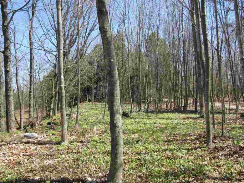 TBD Barque Point Tr, Manistique, MI by Grover Real Estate $69,900