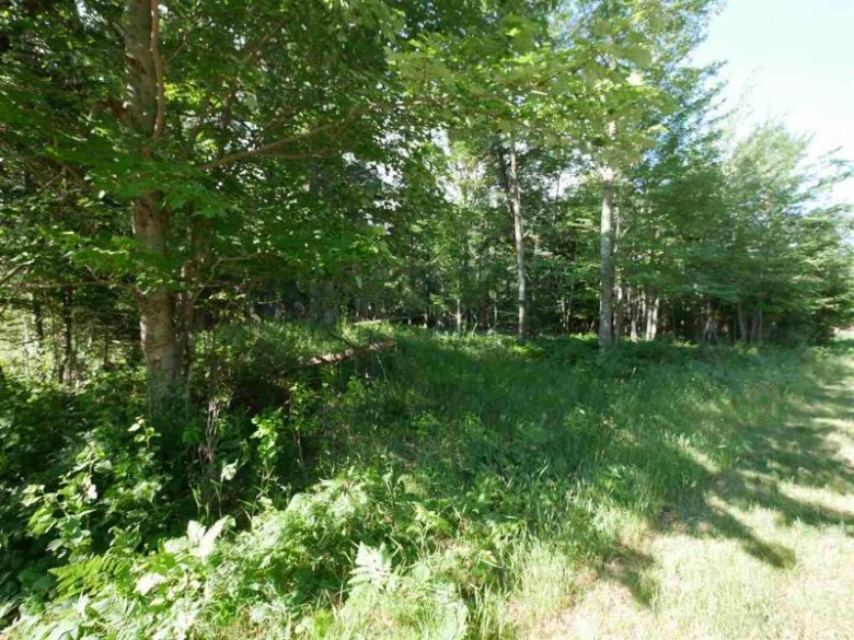 TBD 6th & Centre St Lots 201, 202, 203 & 204, Eagle Harbor, MI by Century 21 North Country Agency $75,000