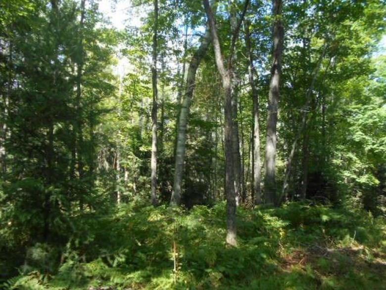 5176 Bonnie View Rd, Florence, WI by Wild Rivers Realty-F $54,900