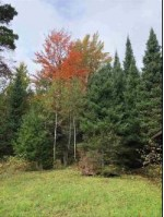 TBD Net River Rd, Crystal Falls, MI by Wild Rivers Realty-C $49,900