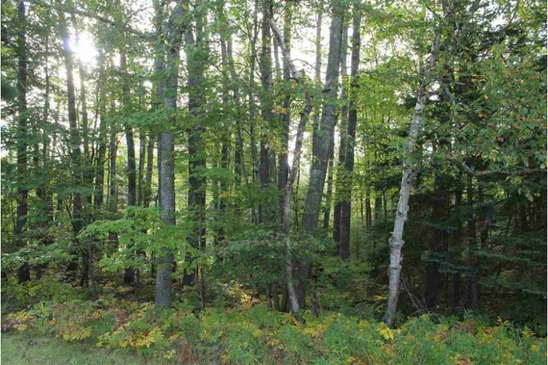 TBD Riverview PART OF LOT 20, Manistique, MI by Re/Max Superiorland $12,500