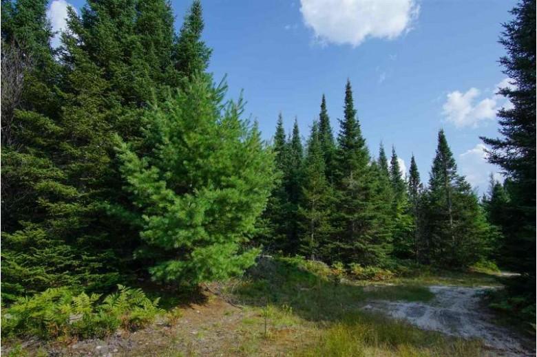 80 ACRES Kirkpatrick Ln, Gwinn, MI by Northern Michigan Land Brokers $96,000