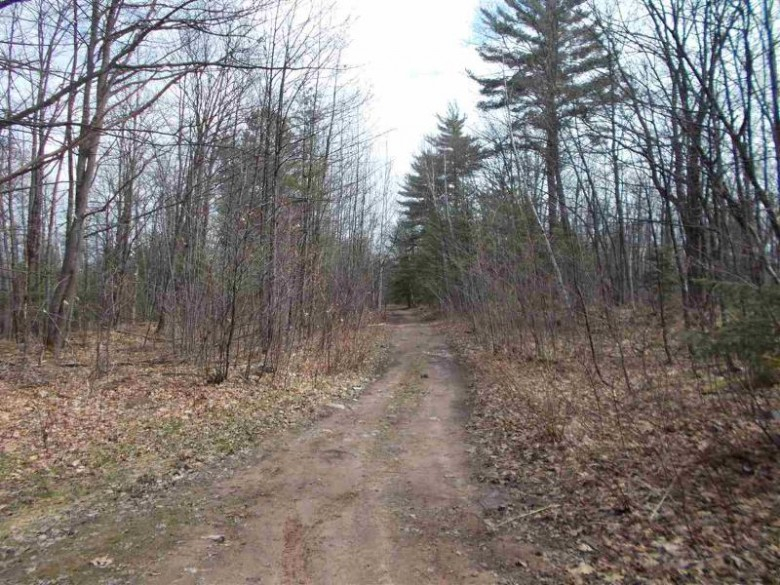 36.3 ACRES Maas St, Negaunee, MI by Northern Michigan Land Brokers $139,900