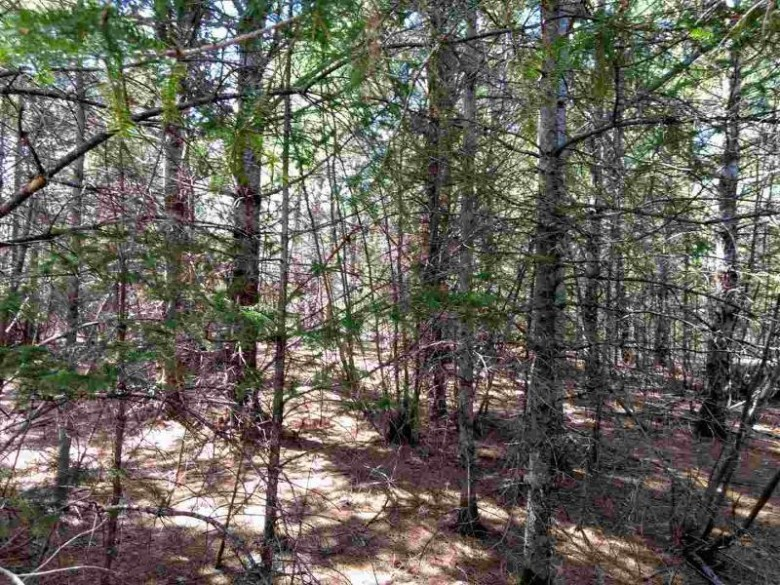 TBD Forest Highway 16 Rd, Kenton, MI by Up North Realty $80,000