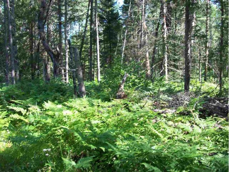 TBD Co Rd 581 PARCEL 3, Ralph, MI by Stephens Real Estate $45,000