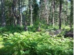 TBD Co Rd 581 PARCEL 4, Ralph, MI by Stephens Real Estate $45,000