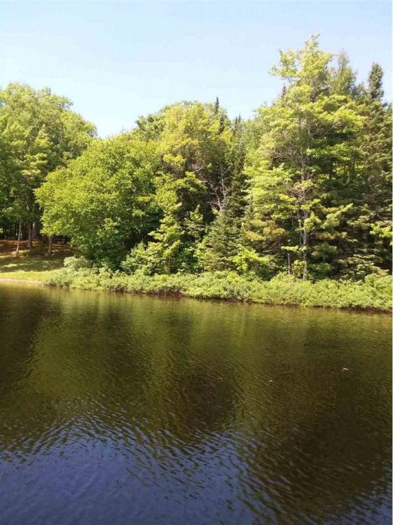 TBD Off Telephone Rd I, Twin Lakes, MI by Re/Max Douglass R.e.-H $95,000