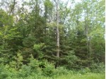 TBD Lamon Tangue Rd, Fence, WI by Wild Rivers Realty-F $40,000