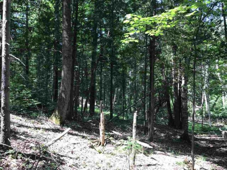 TBD Vandenboom, Marquette, MI by Re/Max 1st Realty $1,500,000