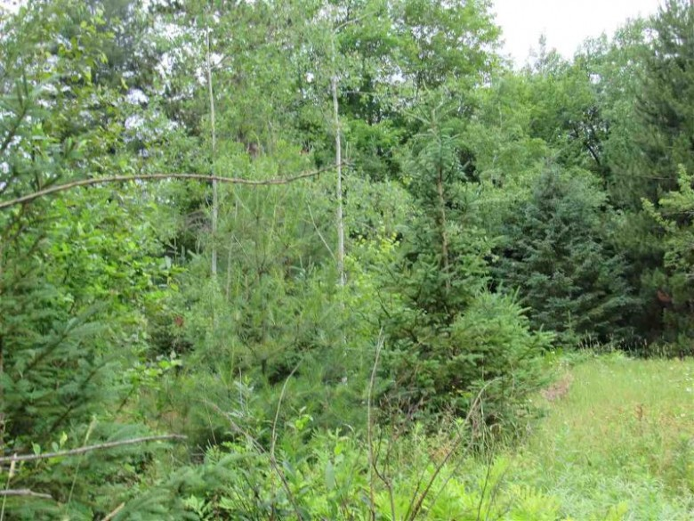 17279 Aura Rd, L'Anse, MI by Great Lakes And Land Real Estate Company $28,800