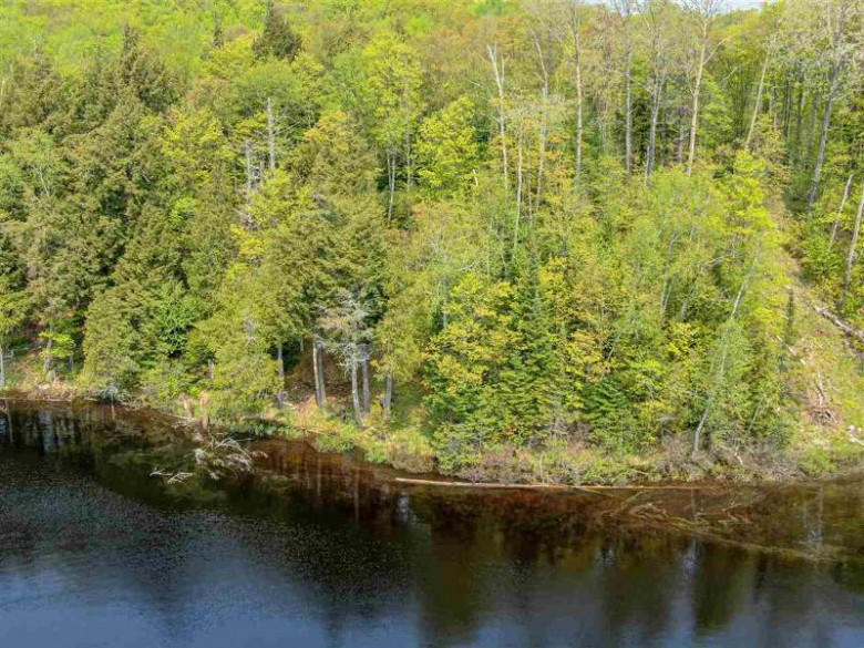 On Chaney Lake Cove Rd, Bessemer, WI by Coldwell Banker Mulleady $32,400