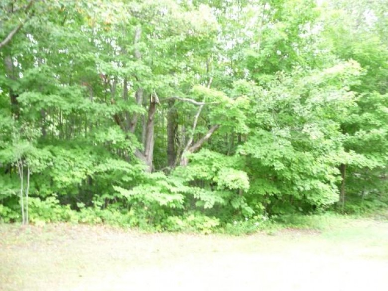 Negaunee, MI by Select Realty $21,000