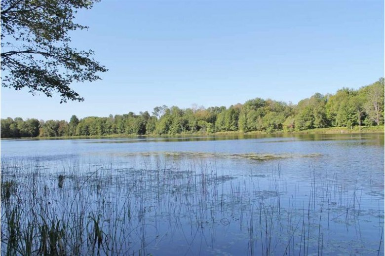TBD Little Stevens Lake, Wetmore, MI by Re/Max Superiorland $65,000
