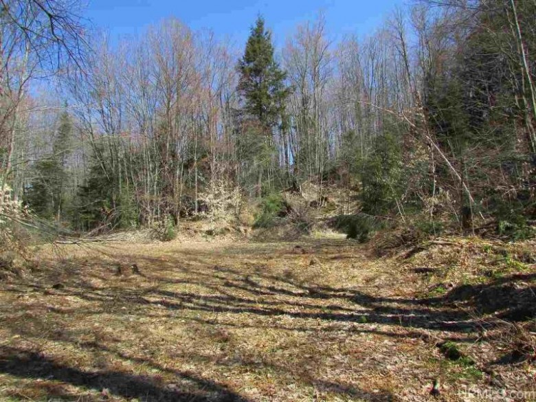 TBD Old Plank/Anne Rd, Wetmore, MI by Re/Max Superiorland $117,000