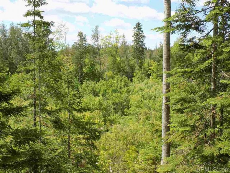 7081W Low High Rollaways, Manistique, MI by Grover Real Estate $155,000
