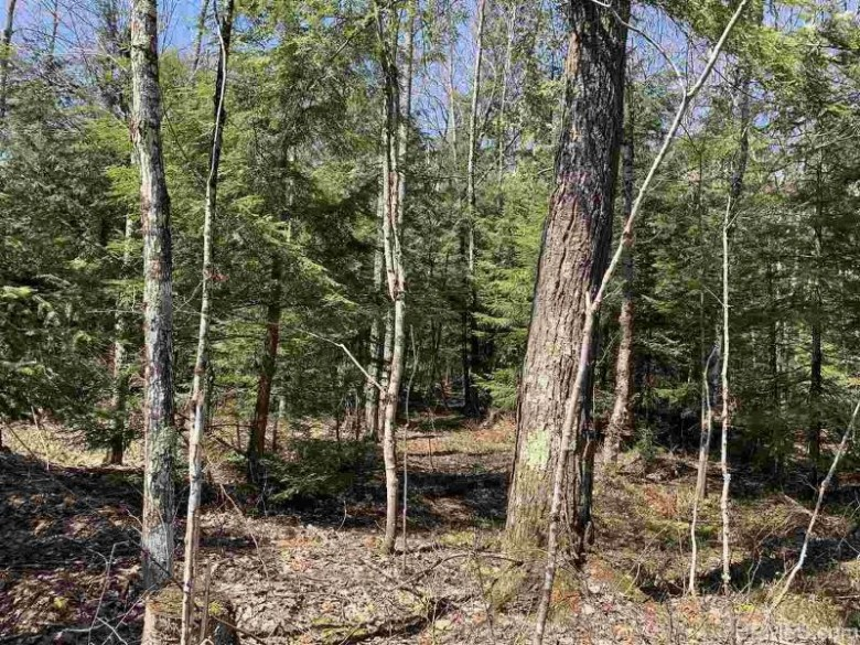 8250 M38, Nisula, MI by Up North Realty $69,900