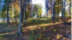 W8068 S Lake Antoine Rd HOME SITE PARCEL #1, Iron Mountain, MI by Harris State Wide $144,900
